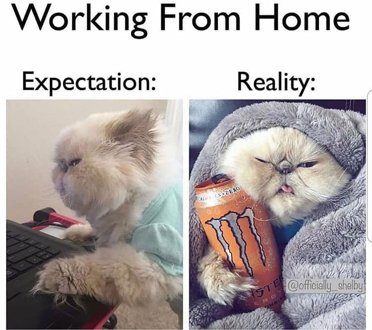 Working from Home.